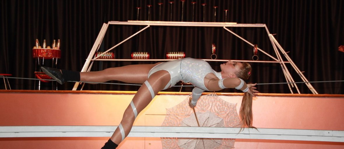 cirque-salle-spectacle-enfant-comite-entreprise-france-ce