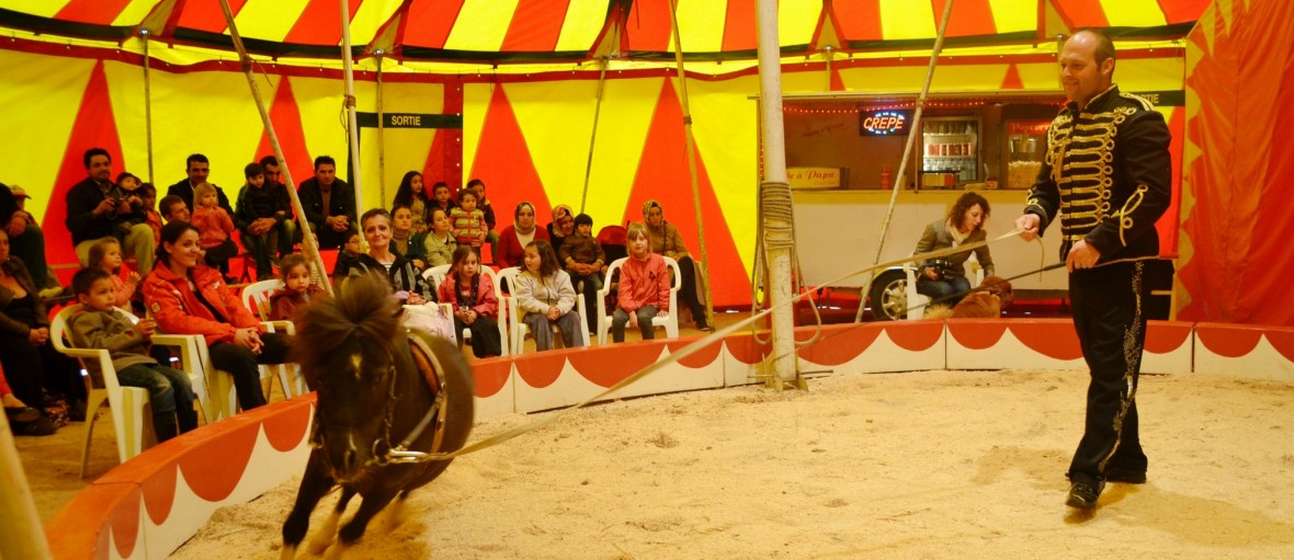 insolite journee mondiale alzheimer au cirque