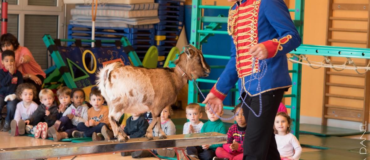 cirque marseille scolaire ecole event
