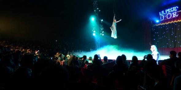 Cirques de Noel de Clermont et Metz
