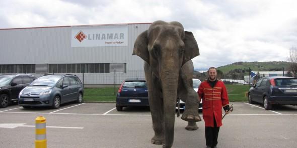 Inauguration d'usine – journée cirque